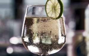 White Wine Spritzer